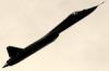 vladimir_krm