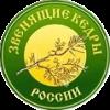 Miroshnichenko Andrey