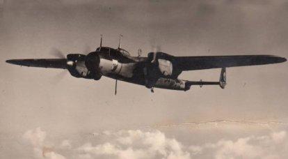戦闘機。 Luftwaffe Loser Eagles