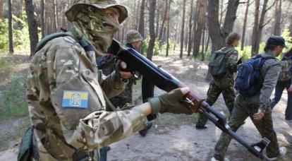 विशेषज्ञ ने नाटो और रूस के बीच युद्ध में यूक्रेनी कमांडो की संभावित भूमिका के बारे में बात की
