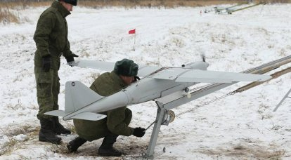 Achievements and prospects of domestic UAVs
