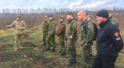 Os militares da Estônia e da Finlândia decidiram aprender com colegas ucranianos