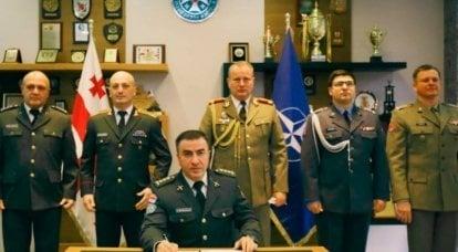 Entgegen den Versprechungen, nicht nach Osten zu expandieren: über die Chancen Georgiens und der Ukraine auf Aufnahme in die NATO
