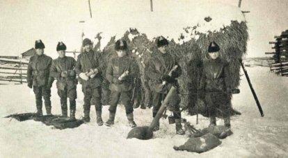 """""""उत्तर के लिए उसे एक आदेश दिया गया था।"""" शेनकर्स्क ऑपरेशन 1919 जी।"""