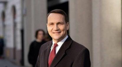 """波兰前外交大臣:""""德国并不认为俄罗斯是威胁,而是徒劳的"""""""