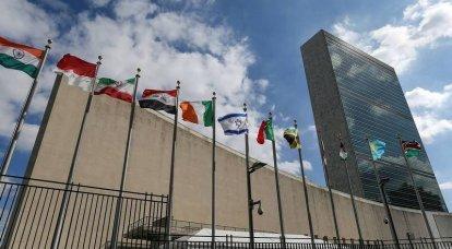 유엔 총회에서 두 나라는 나치즘의 영광에 대한 러시아 연방의 결의안을지지하지 않았다
