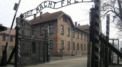 아우슈비츠 재판 : 자비로운 독일 정의