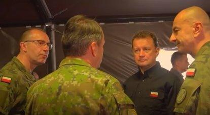 पोलिश पर्यवेक्षक: बाल्टिक राज्य नाटो के कमजोर बिंदु हैं