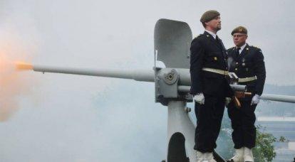 スウェーデン国防省の長は、スウェーデン軍が他の国のために戦う準備ができているかどうかという質問に答えなければなりませんでした