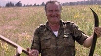 贝尔格莱德官方租用了塞尔维亚人民的英雄