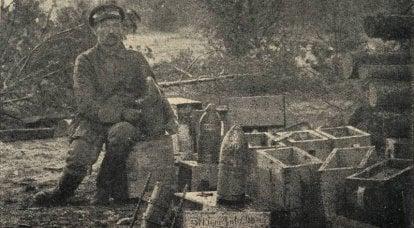 Savaşın iştahı. Birinci Dünya Savaşı'nda Rus ordusu tarafından topçu mühimmatı tüketimi