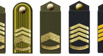 Zelensky signe un décret introduisant un nouveau grade militaire pour la base des Forces armées ukrainiennes