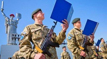 Ukrayna'nın silahlı kuvvetleri. İnfografikler