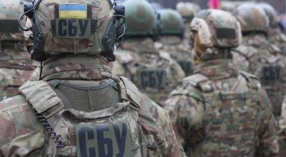 事业单位改革。 乌克兰变成美国