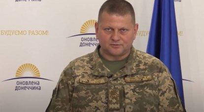 Ukrayna Silahlı Kuvvetleri'nin yeni başkomutanı, Ukraynalı politikacıların Donbass'taki JFO bölgesini ziyaret etmelerini yasakladı.