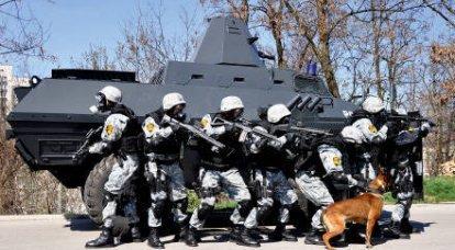 波斯纳:警察特种部队