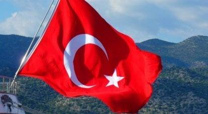 """O punho de aço do """"soft power"""": Turquia na Geórgia"""