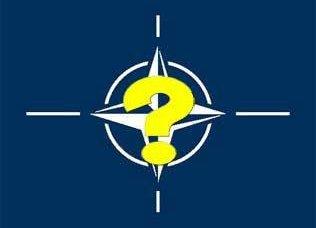 NATO同盟の結束はどれほど強いのでしょうか。