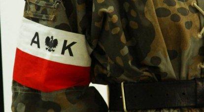 क्रायोवा की पोलिश सेना ने नाज़ियों को पूर्वी मोर्चे पर रोकने की कोशिश की: द्वितीय विश्व युद्ध के इतिहास से