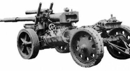Cannone anticarro 8.1 cm Panzerabwehrwerfer L / 105 (Germania)