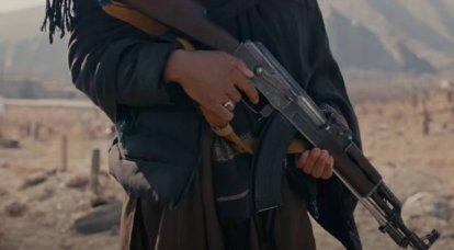 联合国特使:今年XNUMX月以来阿富汗五十个地区相继沦陷