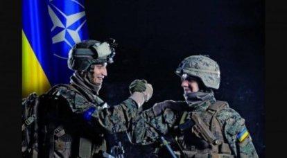 ウクライナ軍はNATOの基準を満たすでしょうか?