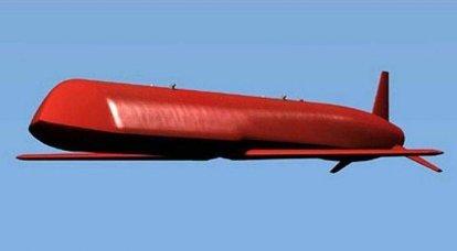 Strategische Marschflugkörper X-101. Infografiken