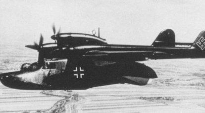 戦闘機。 人魚シンデレラの「フライングシューズ」