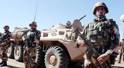 알제리 군대는 북아프리카에서 러시아의 중요한 파트너입니다.