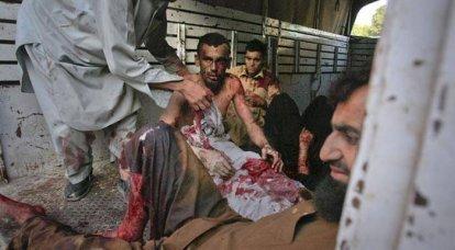 "Pakistani Taliban revenge for bin Laden's ""torment"""