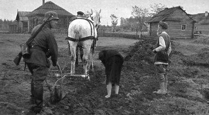 소련 점령지에서의 빵 수확 및 조달