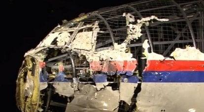 """""""Als Caesars Frau, ohne jeden Verdacht"""" - Pushkov lobte Hollands Entscheidung, die Rolle der Ukraine im MH17-Fall endgültig zu untersuchen"""