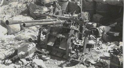Artilharia antiaérea japonesa de pequeno calibre