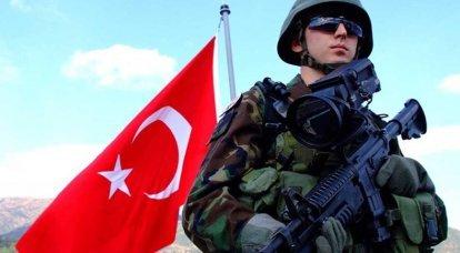 터키의 지상군과 국가 생활에서의 군사 정치적 역할