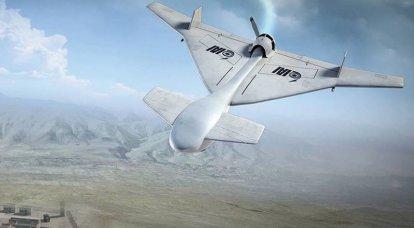 Um drone kamikaze de fabricação israelense caiu no Irã
