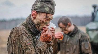 Fotos da competição sobre a popularização do serviço militar no exército lituano foram mostradas na Lituânia