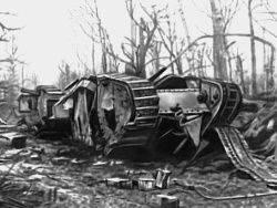 जिसके लिए वे प्रथम विश्व युद्ध में लड़े थे