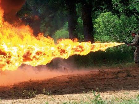 Изрыгающие пламя