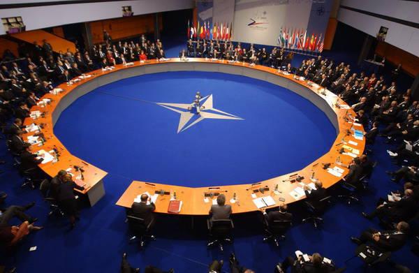 NATO'nun gerçekleri: güzel sözler ve tehlikeli şeyler