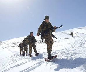 Cold arctic war