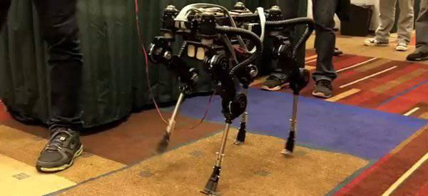 """SQ1"" - 来自韩国的四足机器人的韩国竞争对手"