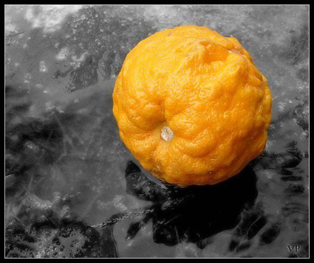 """共产党的""""橙色革命"""""""