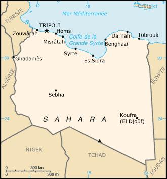 """关于""""解放""""的利比亚"""