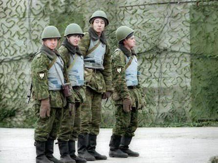 人权活动家:俄罗斯没有军队