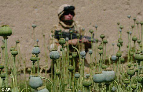 美国军方的毒品使用正在变得普遍