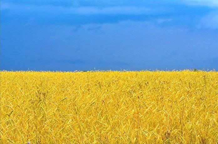 İki Ukrayna ve bir çözüm