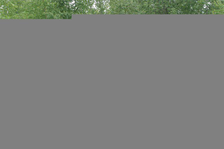 http://topwar.ru/uploads/posts/2011-11/1320635976_ORD_SAM_Crotale-NG_on_Sisu_XA-981_Finland_lg.jpg