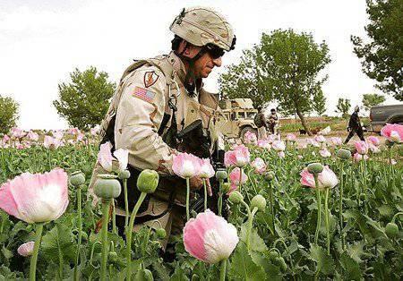 http://topwar.ru/uploads/posts/2011-12/1323791609_80760024_us_opium.jpg
