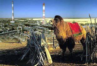 http://topwar.ru/uploads/posts/2011-12/1324524248_kazakhstan.1122458023.jpg