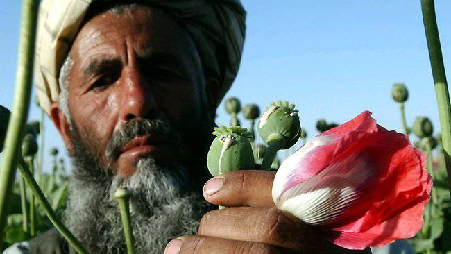 http://topwar.ru/uploads/posts/2012-02/1328498145_005134-poppy-farmer.jpg